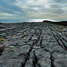 limestone pavement.. inishmore by Michelle McMahon