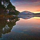 Morning glow over Derwentwater by Shaun Whiteman