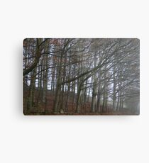 The sleeping trees of Winter Metal Print