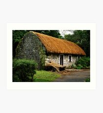 irish cottage.. Art Print