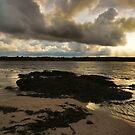 coral beach, carraroe..  by Michelle McMahon
