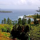 Norfolk Island, Open Coast, Australia by johnrf