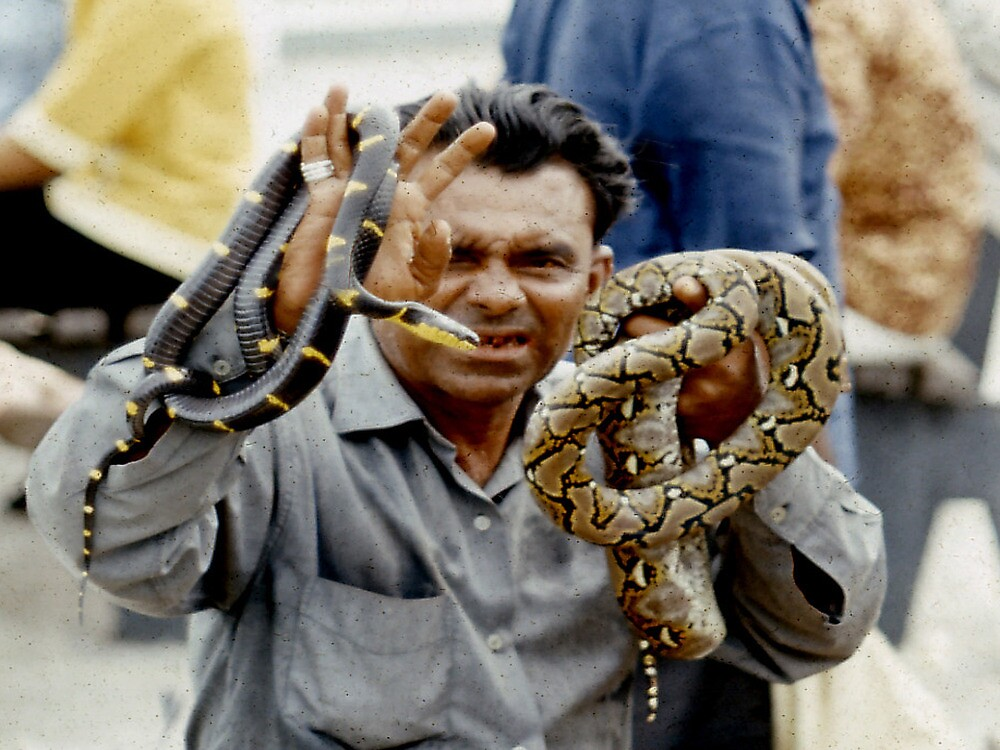 Snake Charmer - SIngapore by Andrew  Bailey