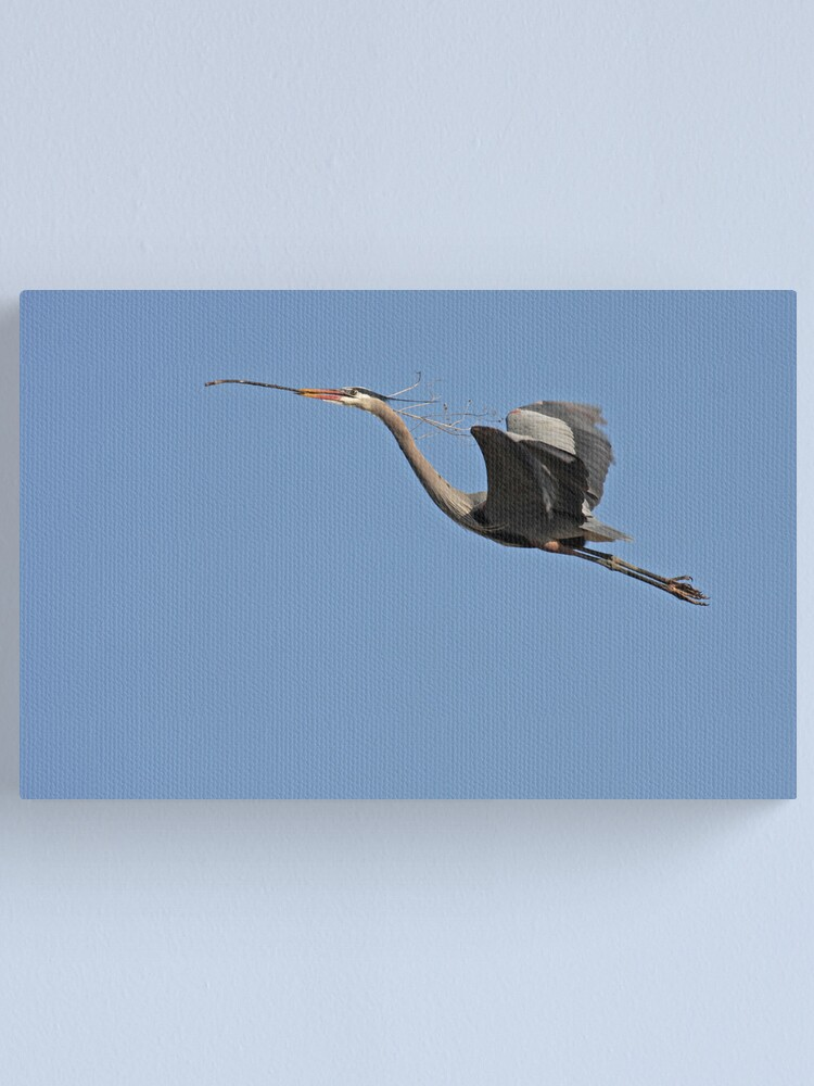 Alternate view of Blue Heron Canvas Print