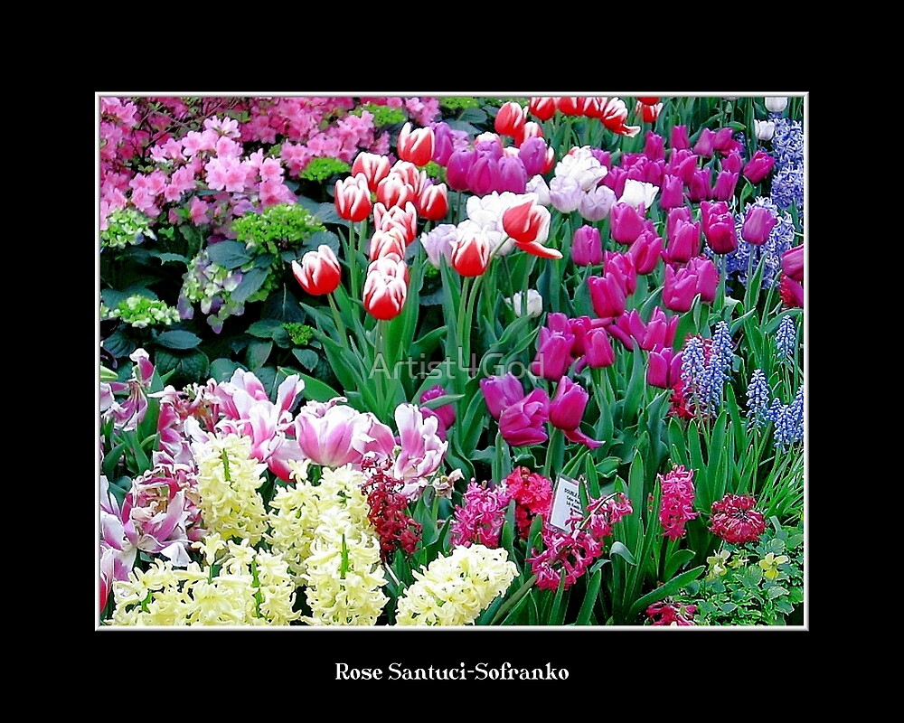 Spring Flowers #1 by Rose Santuci-Sofranko