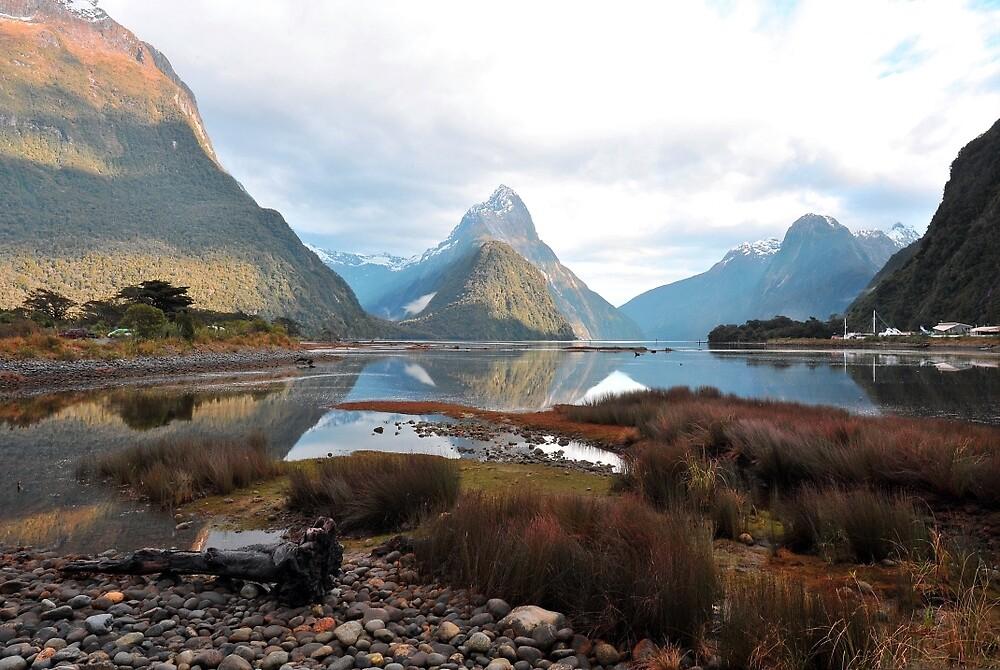 Milford Sound. South Island, New Zealand. (2) by Ralph de Zilva