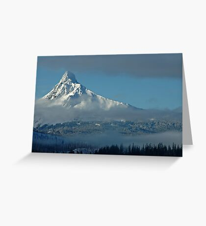 The Winter Blues Greeting Card