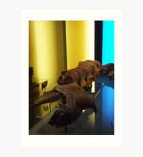 Fossil Strobes Art Print