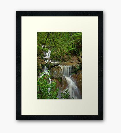 Autumn Rain at Olinda Falls Framed Print
