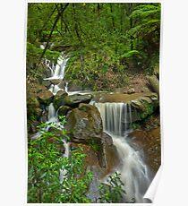 Autumn Rain at Olinda Falls Poster