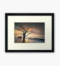 Boneyard Sunrise - Botany Bay, Edisto Island SC Framed Print