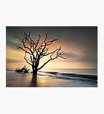 Boneyard Sunrise - Botany Bay, Edisto Island SC Photographic Print