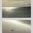 Sand,Sun,Stars & shells by chloemay