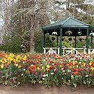 Gardeners Paradise von 3Cavaliers