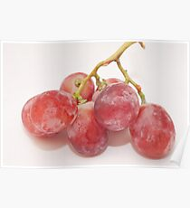 Red grape Poster
