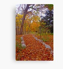 Autumn Nature Walk Canvas Print