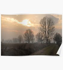 Winter Trees in the Crepuscle Poster