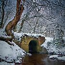 Snowy Bridge, The Cotswolds, England by Giles Clare