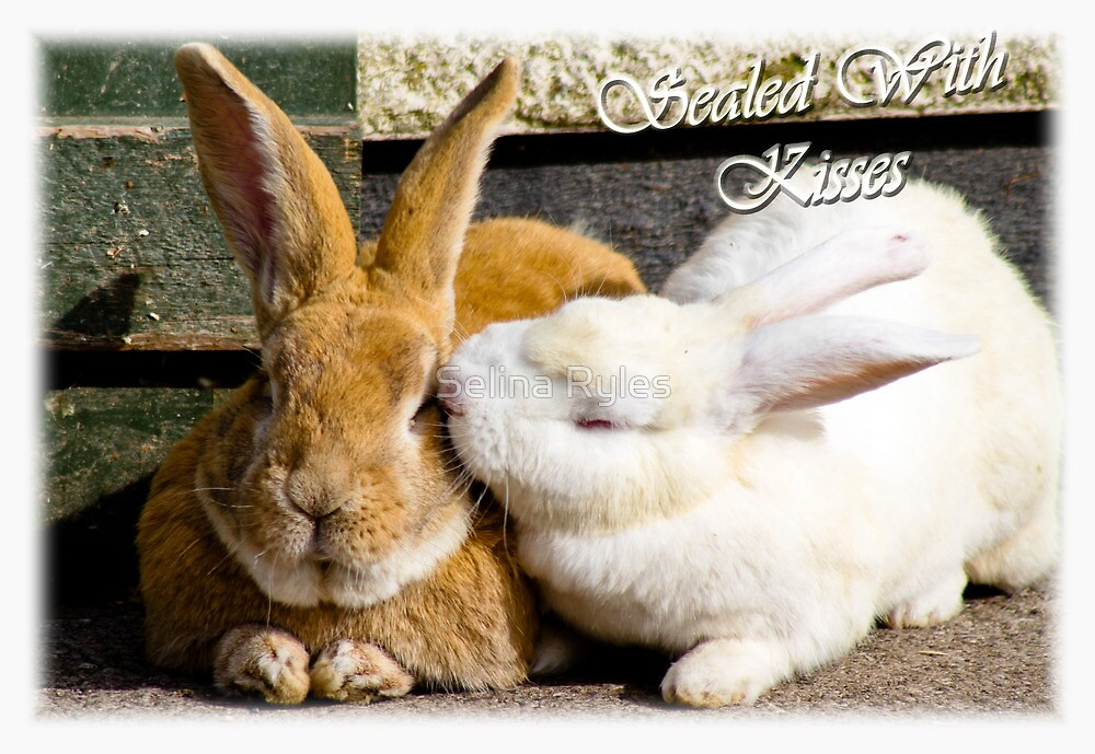 Sealed with kisses  by Selina Ryles