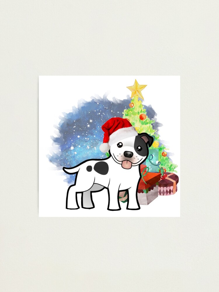 Alternate view of A Staffy Christmas Photographic Print