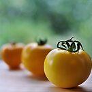 tomato bokeh! by Michelle McMahon