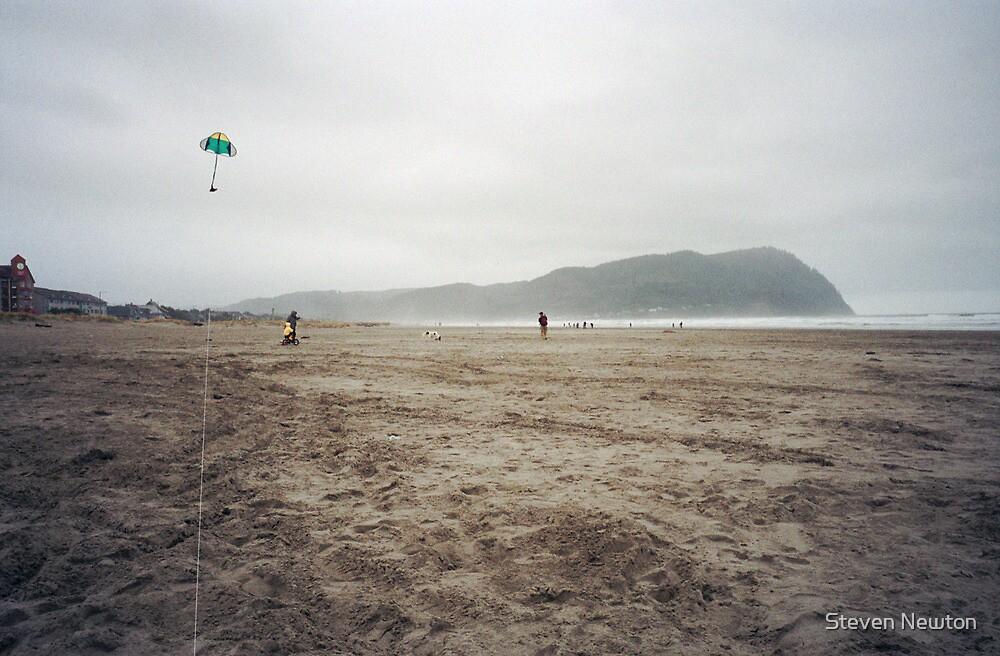 Kite, Beach, Rock by cratermoon