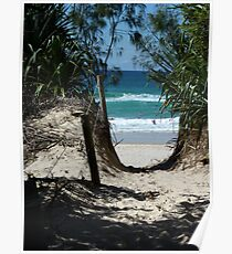 Pathway to Dreamtime Beach, at Fingal NSW Poster