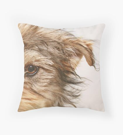 Dooley Throw Pillow