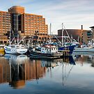 Victoria Dock, Hobart, Tasmania #3 by Chris Cobern