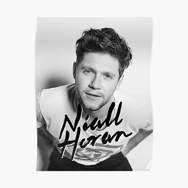 Fournal Niall Nice To Meet Ya North American Tour 2020 Poster