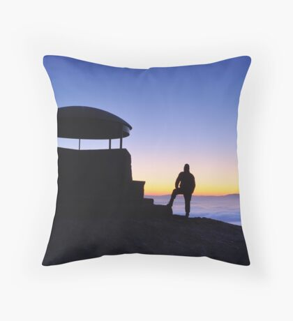 The Mushroom Shelter -  Scout Scar Throw Pillow
