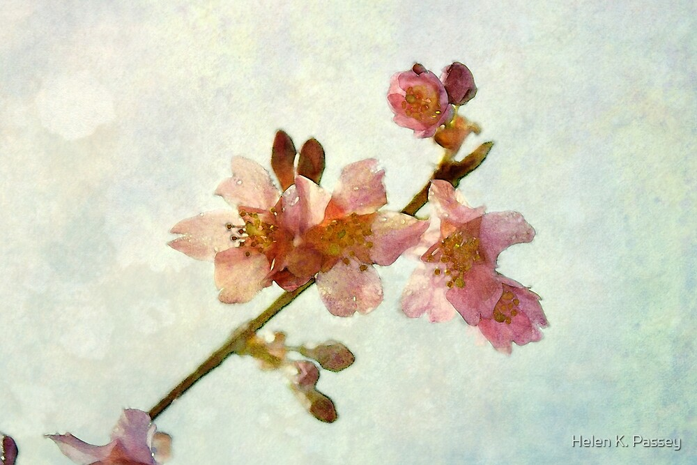 A Touch of Rice Paper by Helen K. Passey