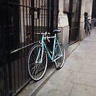 bike by Tony Day
