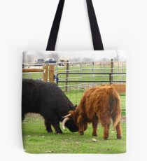 The Lesson Tote Bag