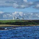 Lighthouse, Inner Farne, Farne Islands by Sandra Cockayne