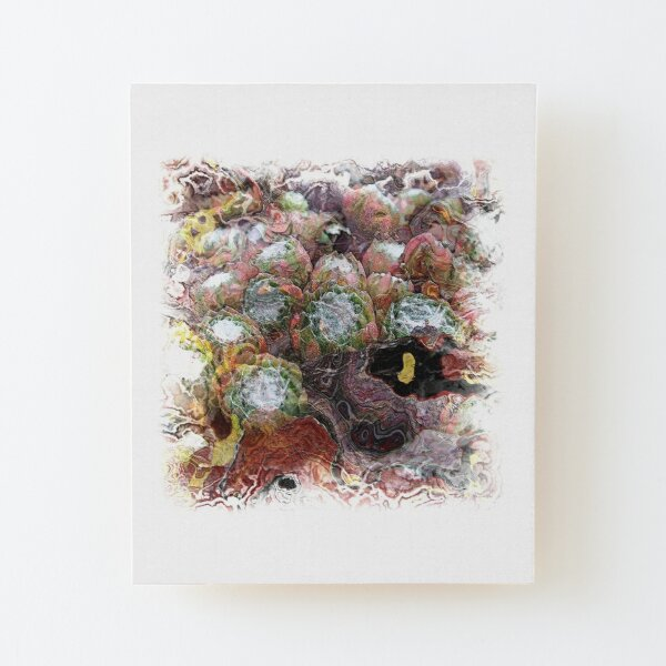 The Atlas Of Dreams - Color Plate 75 Wood Mounted Print