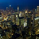 Skyline of Chicago by night by danwa