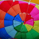 Inside the Balloon by Sally Haldane