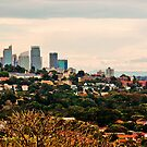 Sydney Dawn Panorama by Raoul Isidro