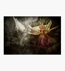 Fantasia.... Photographic Print