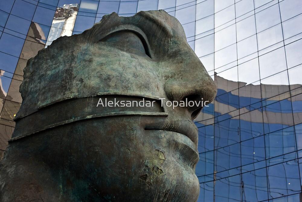Defense by Aleksandar Topalovic