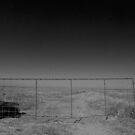 Gateway to? by Larry  Grayam
