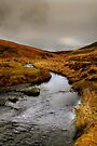 The Meldon Burn in Winter by Christine Smith