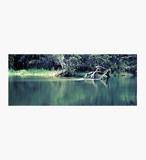 Still Water Photographic Print