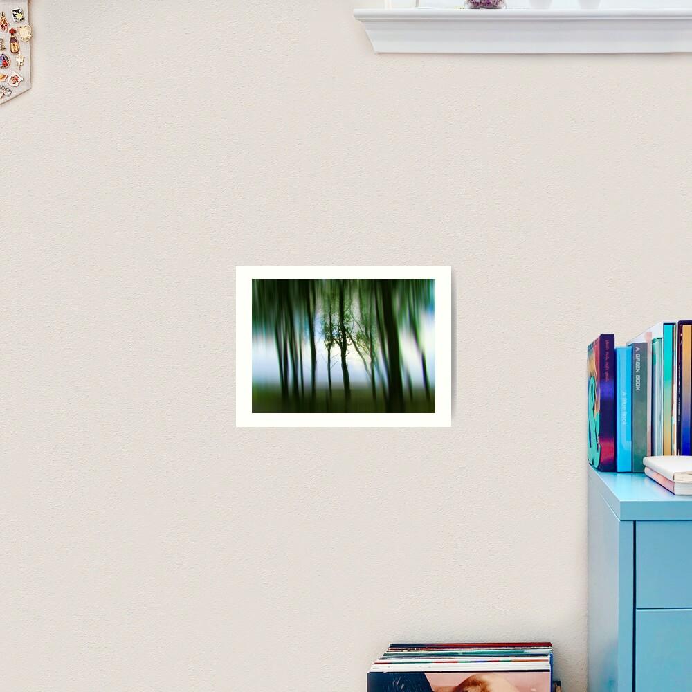 Morning Tree Silhouettes Art Print