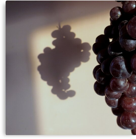Grapes....In The Shadow's by Diane Arndt