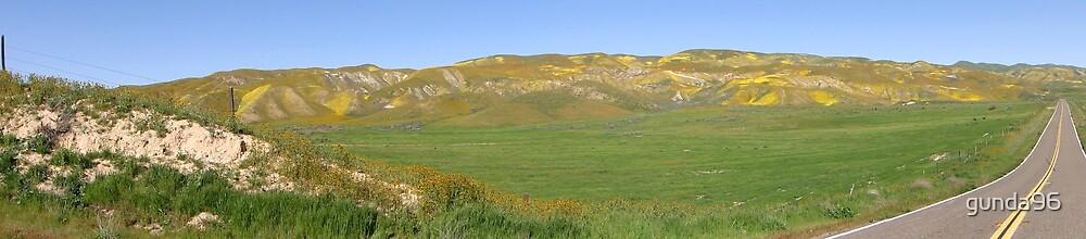 Blue Sky, Green Rolling Hills & California Wildflowers by gunda96