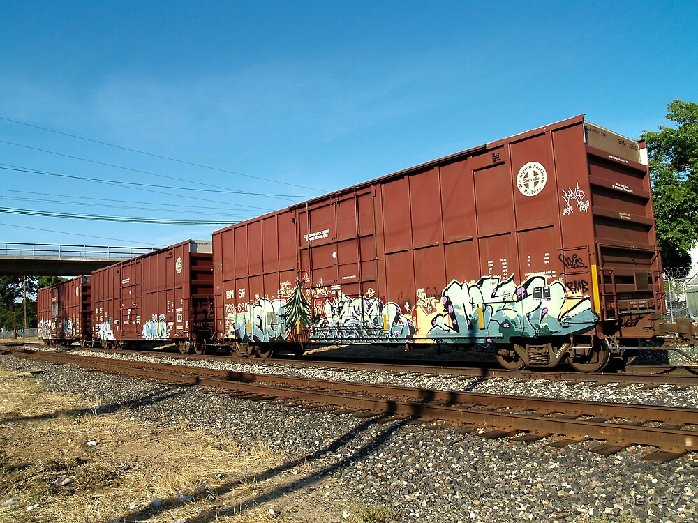 Trains in Sacramento by nexus-7