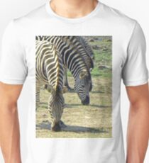 Zebras at lunch T-Shirt