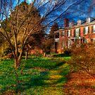Path to Long Hill Estate by Monica M. Scanlan